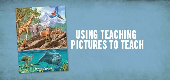 Using Teaching Pictures to Teach