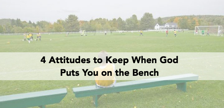 on the bench