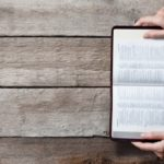 Bible Options for Holiday Gifts