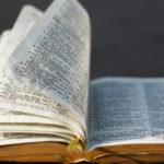 Help Your Group See Jesus in All of Scripture