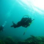Snorkeling and the Shallow Soul