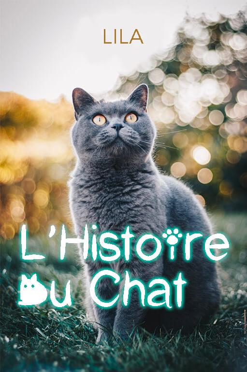 Minitopo - L'Histoire du Chat
