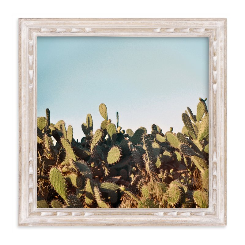 """Cactus in a sunset"" - Limited Edition Art Print by Susanna Nousiainen in beautiful frame options and a variety of sizes."