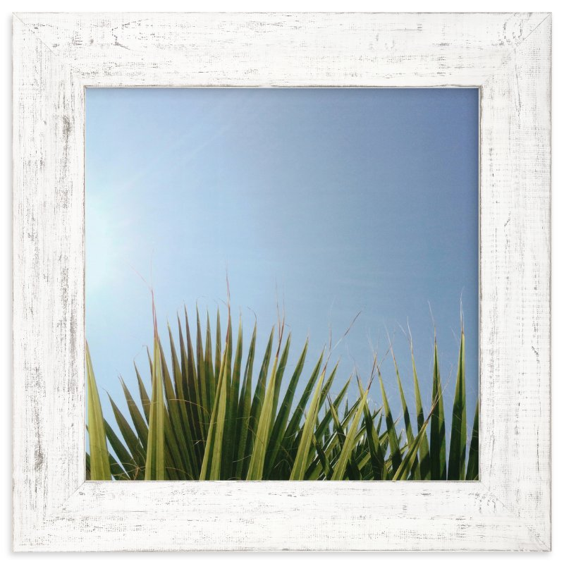 """Summer Fringe"" - Limited Edition Art Print by SylvieCeres Designs in beautiful frame options and a variety of sizes."