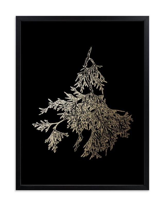 """""""Northern White Cedar"""" - Foil-pressed Art Print by LemonBirch Design in beautiful frame options and a variety of sizes."""