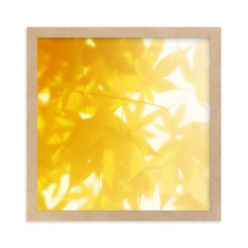 """sun bathing leaves"" - Limited Edition Art Print by amy chapman braun in beautiful frame options and a variety of sizes."