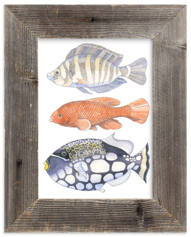 """Three Fish"" - Limited Edition Art Print by Natalie Groves in beautiful frame options and a variety of sizes."