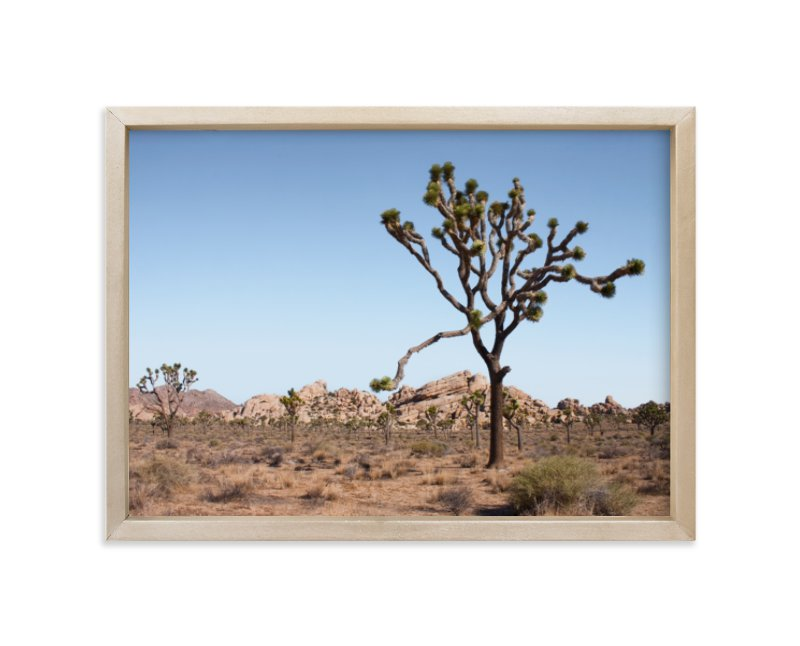 """""""Joshua Tree With Rock Formation in"""" - Limited Edition Art Print by Kathy Van Torne in beautiful frame options and a variety of sizes."""