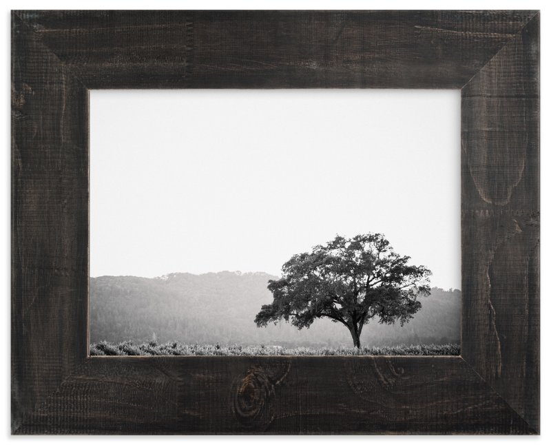 """""""Wild Oak"""" - Limited Edition Art Print by Lindsay Ferraris Photography in beautiful frame options and a variety of sizes."""