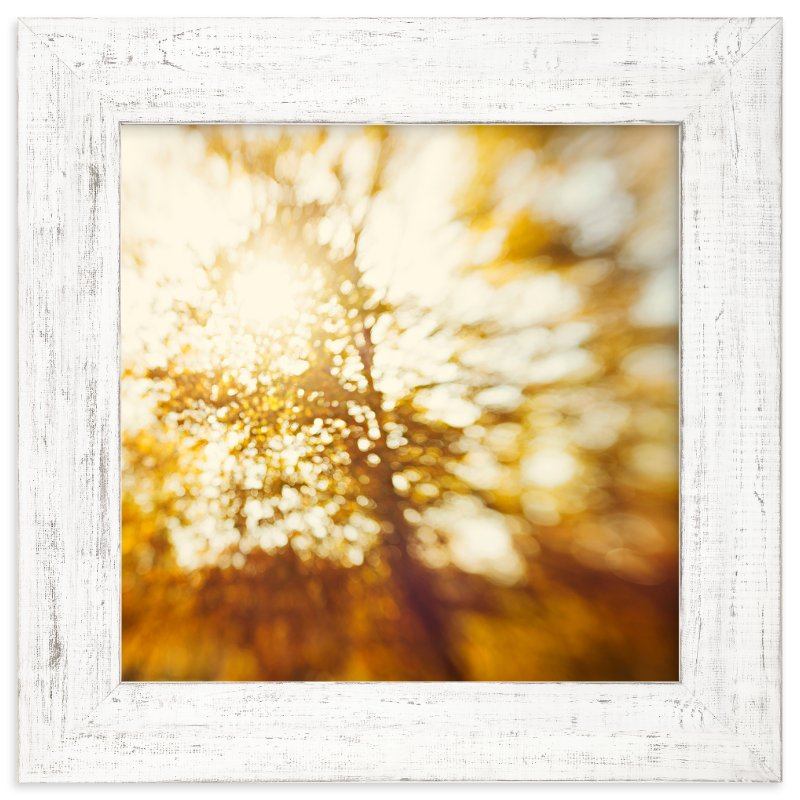 """""""Autumn Explosion"""" - Limited Edition Art Print by Stacy Kron in beautiful frame options and a variety of sizes."""