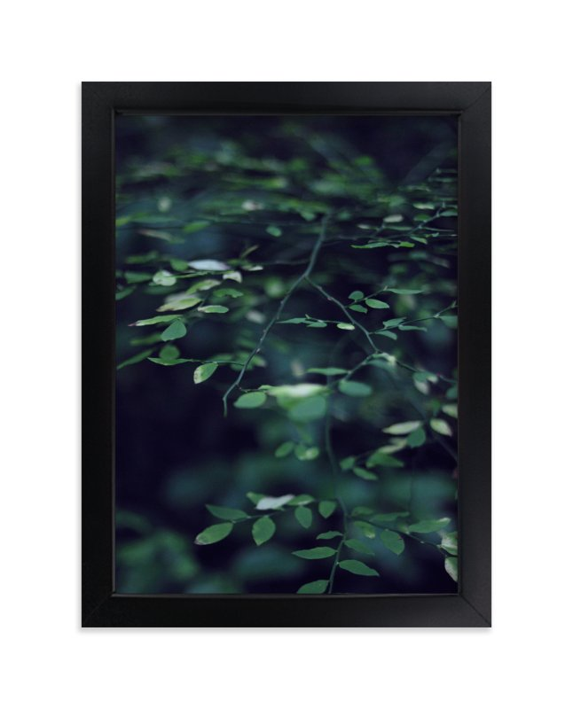 """""""Forest Focus"""" - Limited Edition Art Print by Satpreet K in beautiful frame options and a variety of sizes."""