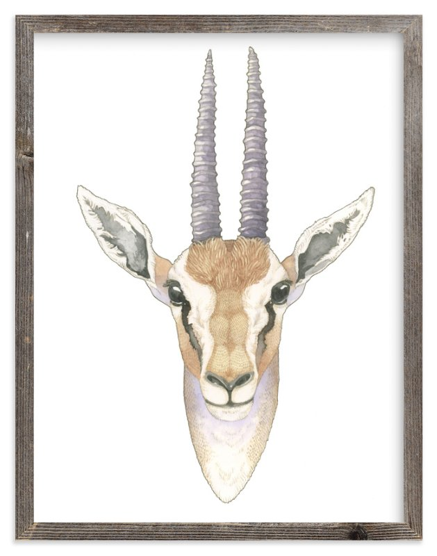 """African Gazelle"" - Limited Edition Art Print by Natalie Groves in beautiful frame options and a variety of sizes."