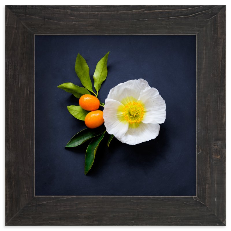 """""""Bold and Botanical No. 1"""" - Limited Edition Art Print by Maddy Hague in beautiful frame options and a variety of sizes."""