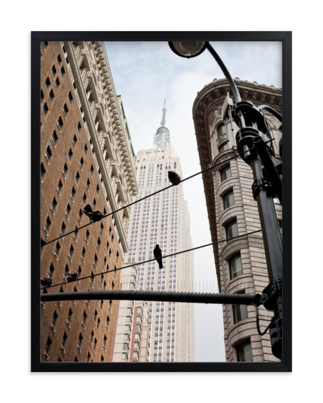 """""""Birds of New York"""" - Limited Edition Art Print by Hannah Graham in beautiful frame options and a variety of sizes."""