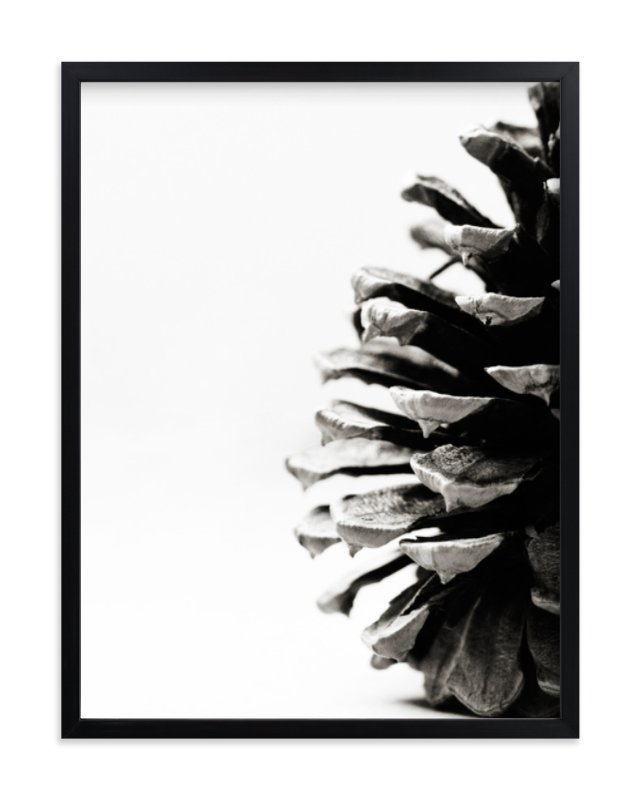 """Pine Cone"" - Limited Edition Art Print by Alexis Arnold in beautiful frame options and a variety of sizes."