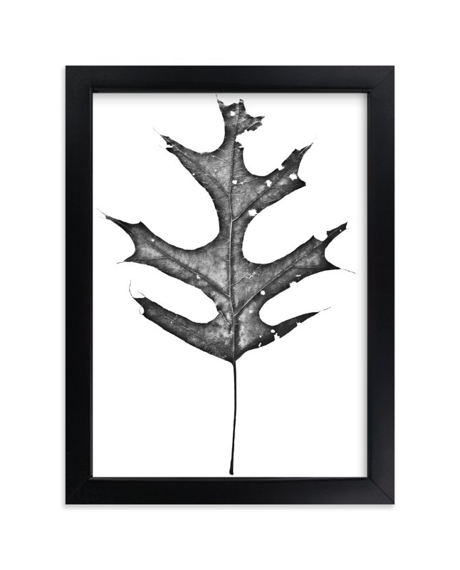 """""""King of the Forest"""" - Limited Edition Art Print by Glenn Carroll in beautiful frame options and a variety of sizes."""