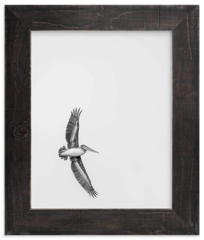 """""""Gliding Pelican Over Lake"""" - Limited Edition Art Print by Mary Ann Glynn-Tusa in beautiful frame options and a variety of sizes."""