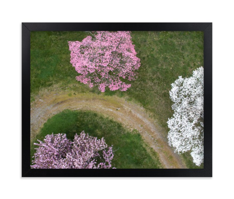 """""""Dogwood Lane"""" - Limited Edition Art Print by Owl and Toad in beautiful frame options and a variety of sizes."""