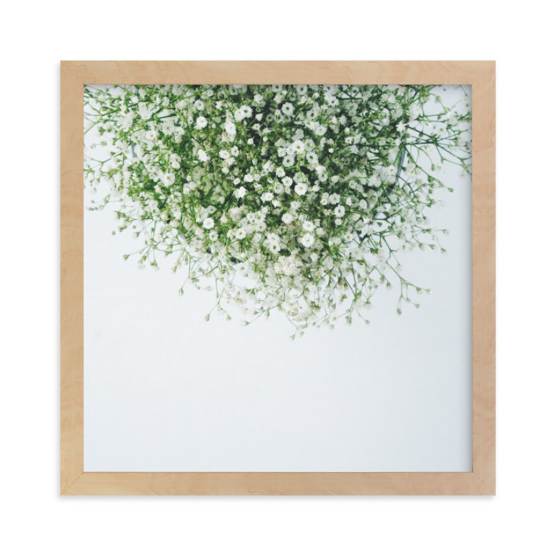 """Gypsophila"" - Limited Edition Art Print by Marabou Design in beautiful frame options and a variety of sizes."