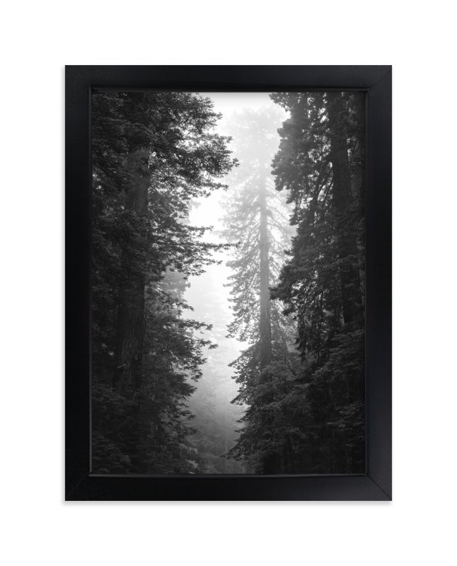 """Redwood Morning"" - Limited Edition Art Print by Kamala Nahas in beautiful frame options and a variety of sizes."