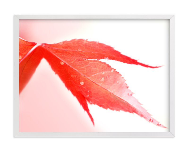 """""""Raindrops on red leaf"""" - Limited Edition Art Print by Celia Maria in beautiful frame options and a variety of sizes."""