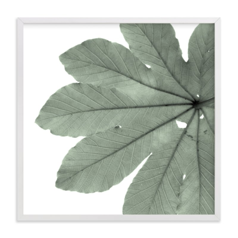 """Leaf In Green"" - Limited Edition Art Print by Jonathan Brooks in beautiful frame options and a variety of sizes."