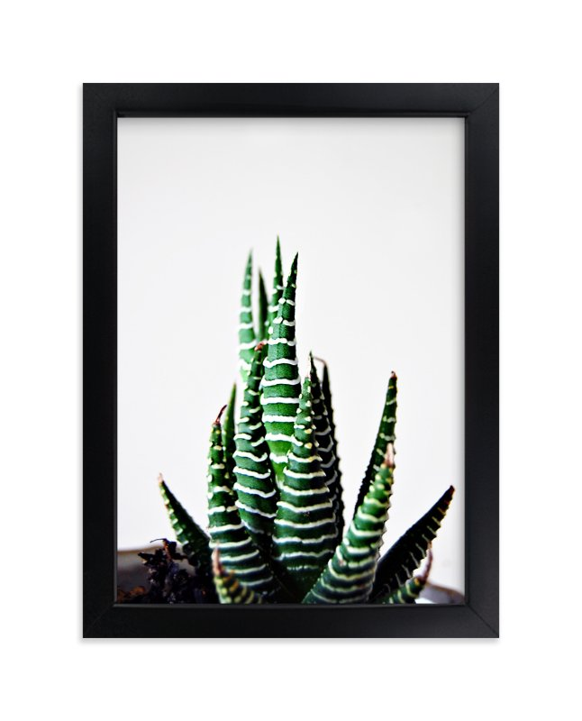 """""""Slow Zebra"""" - Limited Edition Art Print by Mere Paper in beautiful frame options and a variety of sizes."""
