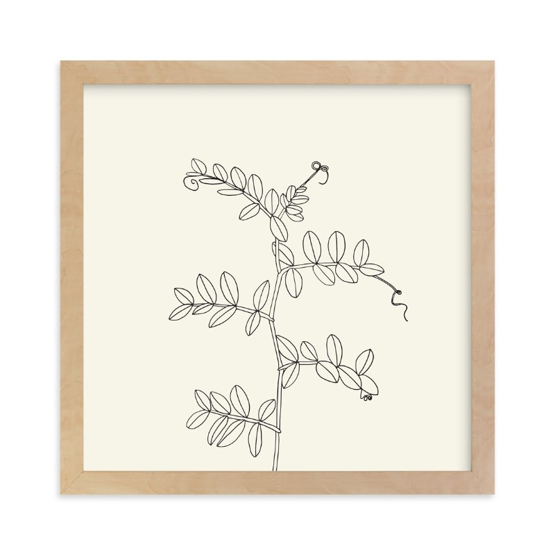 """""""Wild Pea"""" - Limited Edition Art Print by Jorey Hurley in beautiful frame options and a variety of sizes."""
