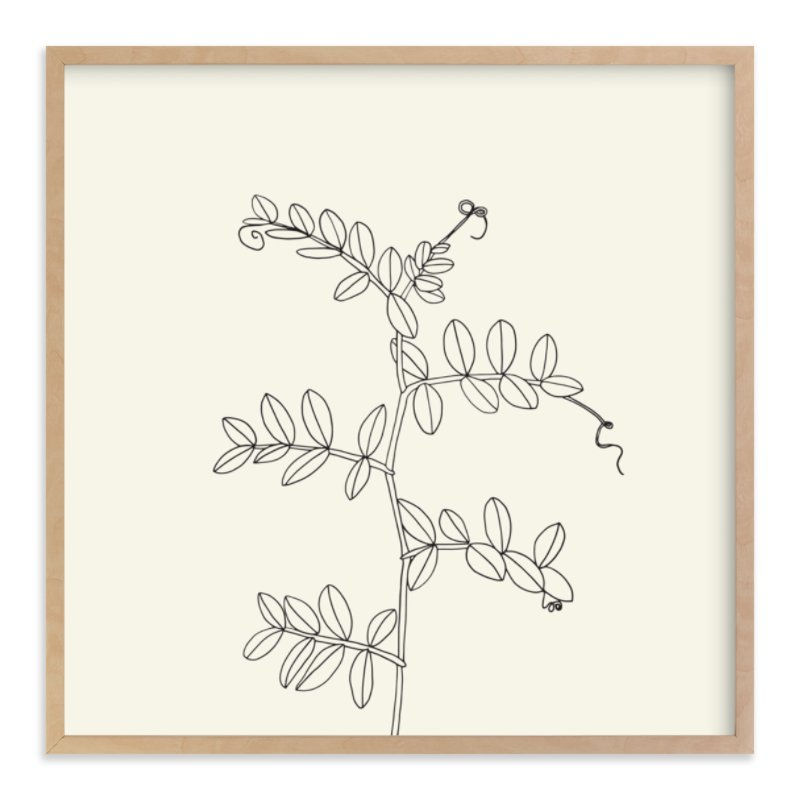 """Wild Pea"" - Limited Edition Art Print by Jorey Hurley in beautiful frame options and a variety of sizes."