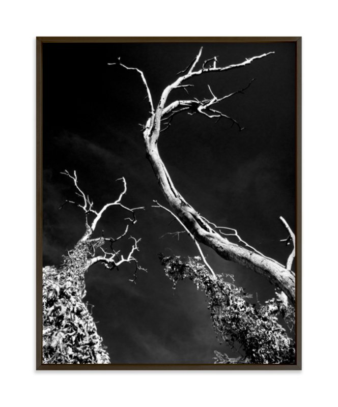 """""""Sentinels"""" - Limited Edition Art Print by Alaric Magno A. Yanos in beautiful frame options and a variety of sizes."""
