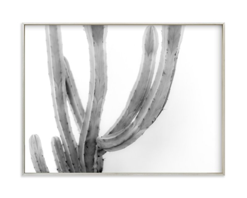 """""""Moorten Cactus Study 2"""" - Limited Edition Art Print by Lisa Sundin in beautiful frame options and a variety of sizes."""