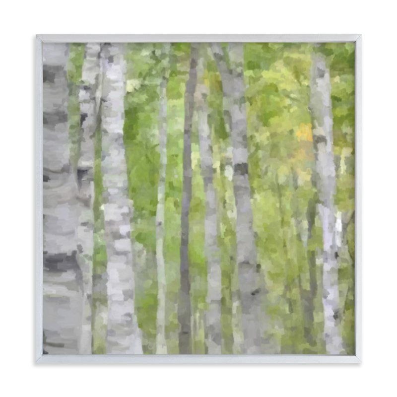 """""""Summer Birches"""" - Limited Edition Art Print by Amy Hall in beautiful frame options and a variety of sizes."""