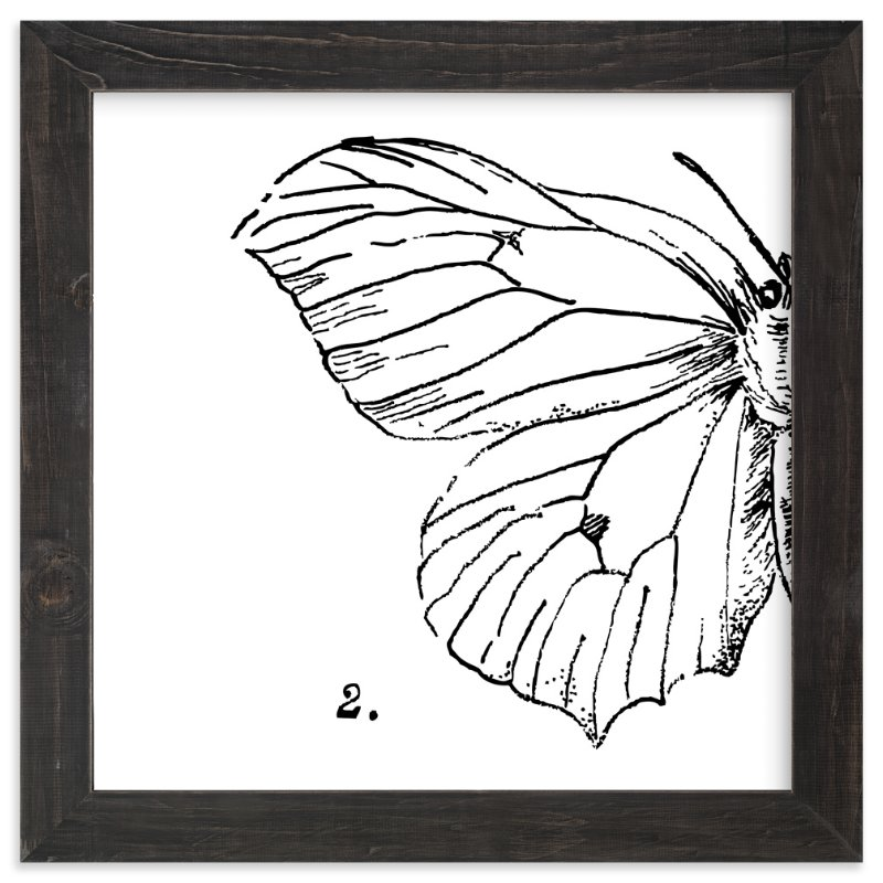 """""""Moth No. 2"""" - Limited Edition Art Print by Nikkol Christiansen in beautiful frame options and a variety of sizes."""