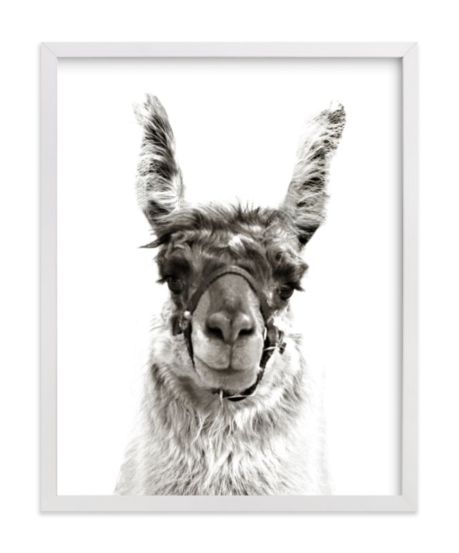 """""""llama"""" - Limited Edition Art Print by Baumbirdy in beautiful frame options and a variety of sizes."""