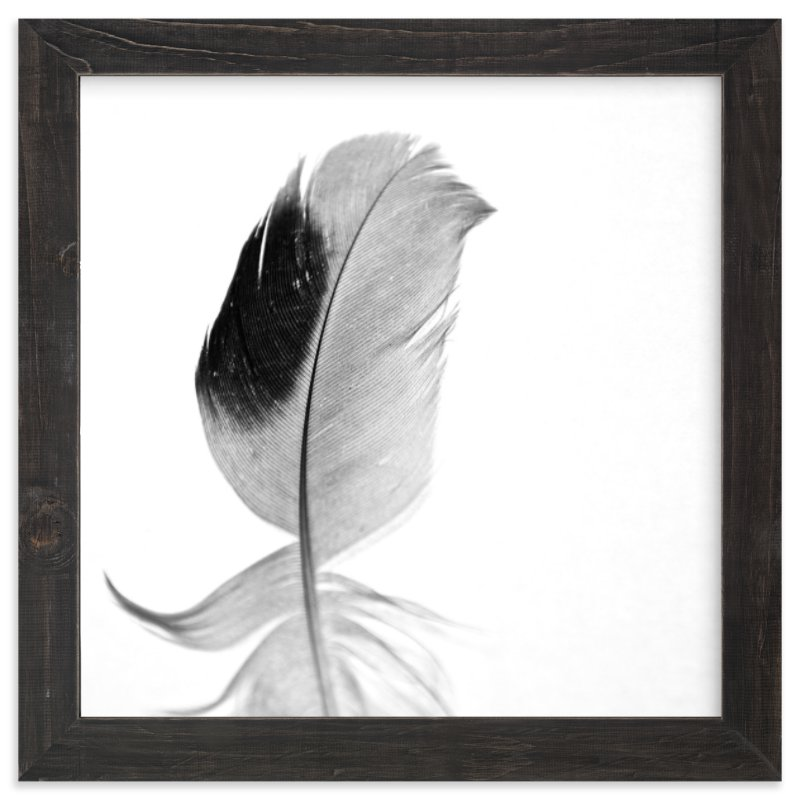 """Ruffled Feather"" - Limited Edition Art Print by Sarah Luna in beautiful frame options and a variety of sizes."