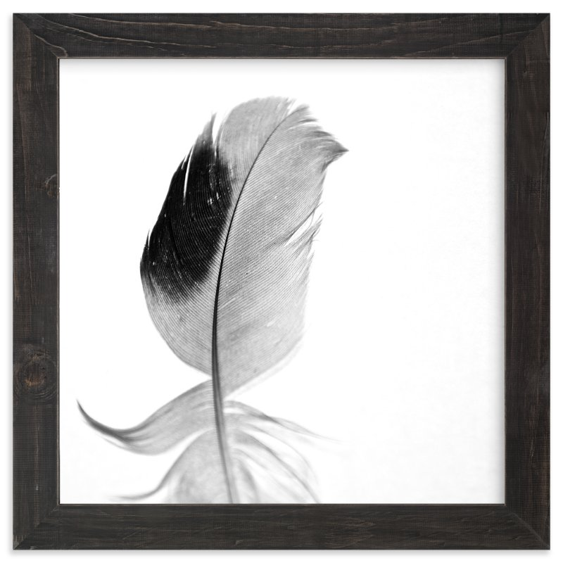 """""""Ruffled Feather"""" - Limited Edition Art Print by Sarah Luna in beautiful frame options and a variety of sizes."""