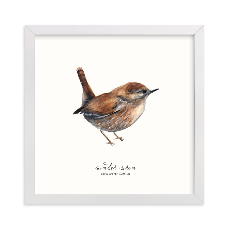 """Winter Wren"" - Limited Edition Art Print by Olivia Kanaley in beautiful frame options and a variety of sizes."