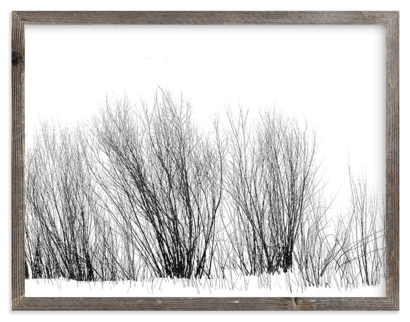 """Winter Willow"" - Limited Edition Art Print by Leslie Le Coq in beautiful frame options and a variety of sizes."