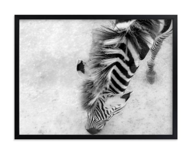 """""""Zebra from Above"""" - Limited Edition Art Print by Mary Ann Glynn-Tusa in beautiful frame options and a variety of sizes."""