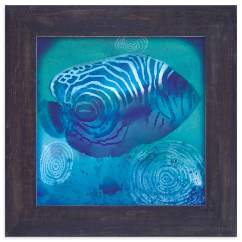 """""""Sea Angelfish"""" - Art Print by Tracy Ann in beautiful frame options and a variety of sizes."""