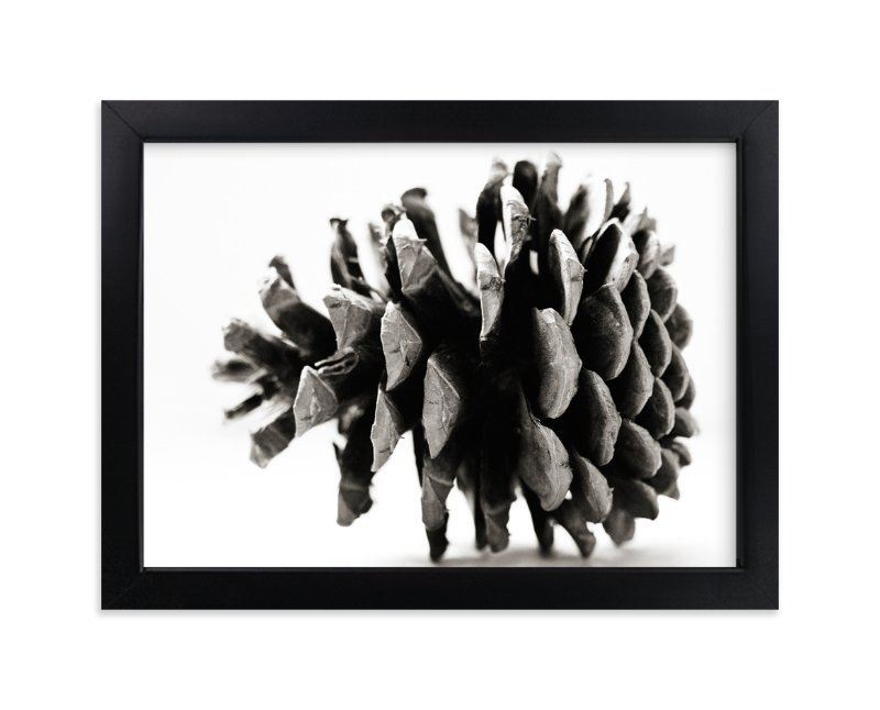 Pine Cone Black & White Wall Art Prints by Alexis Arnold | Minted