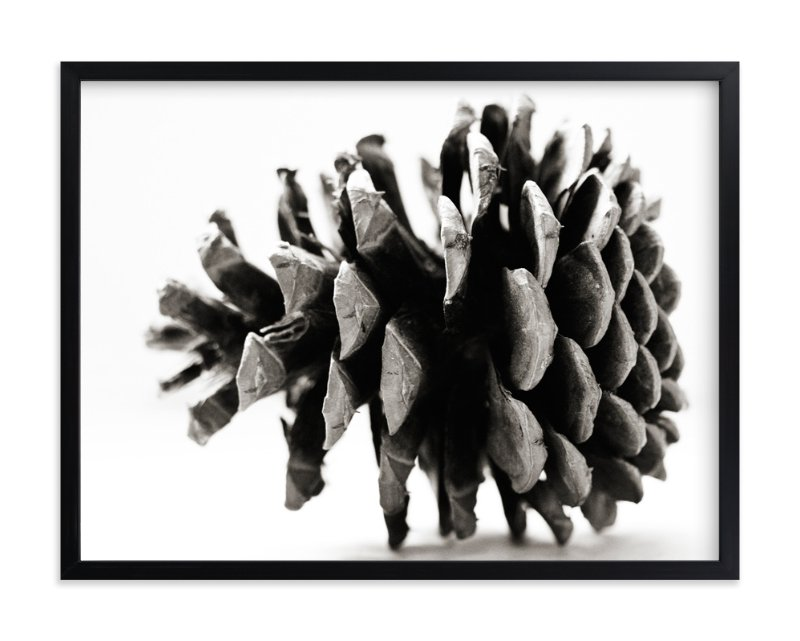 """""""Pine Cone Black & White"""" - Art Print by Alexis Arnold in beautiful frame options and a variety of sizes."""