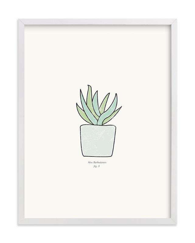 """Succulent fig. 3"" - Art Print by Stacey Meacham in beautiful frame options and a variety of sizes."