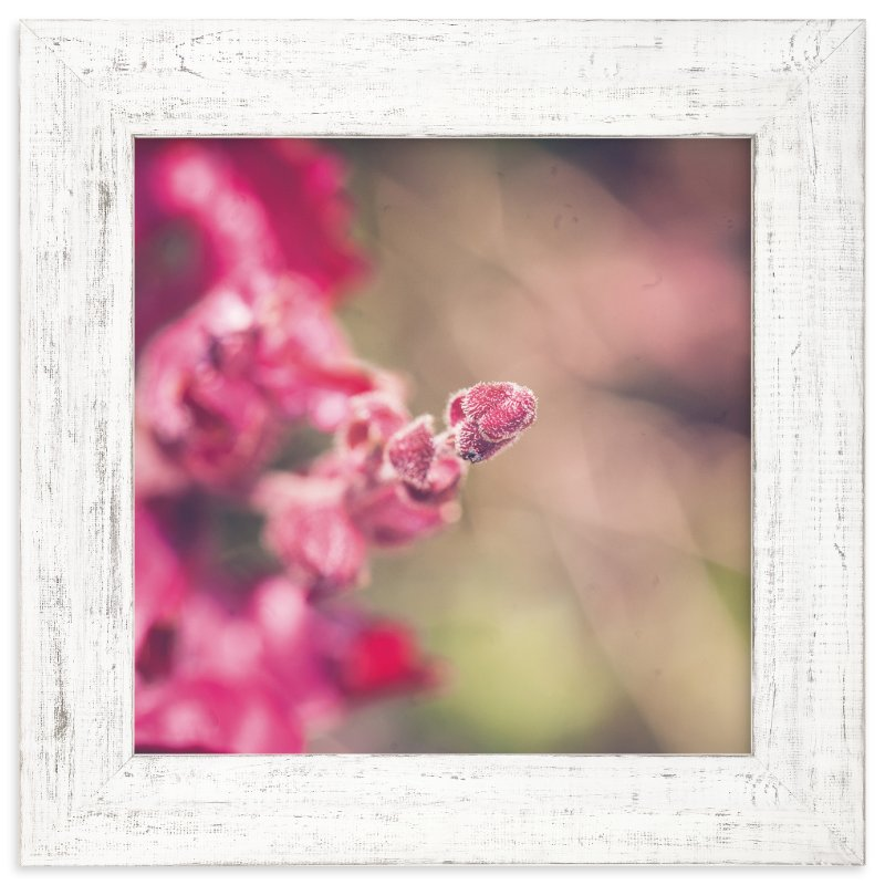"""Fuzzy"" - Art Print by Smile Peace Love in beautiful frame options and a variety of sizes."