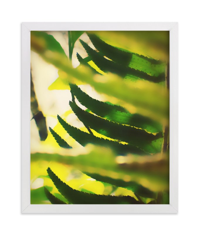 """""""Peekaboo Fern"""" - Art Print by Lisa McLean in beautiful frame options and a variety of sizes."""
