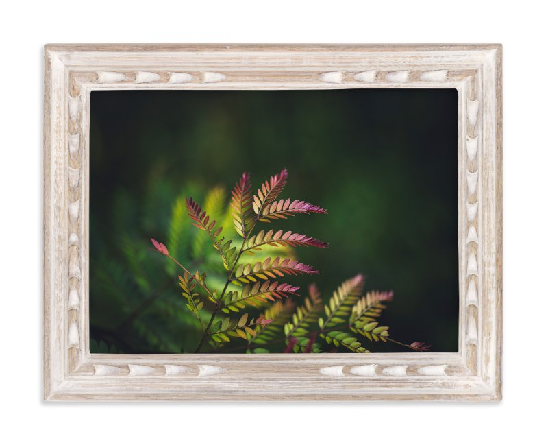 """""""Roaring red"""" - Art Print by Kim Dillon in beautiful frame options and a variety of sizes."""