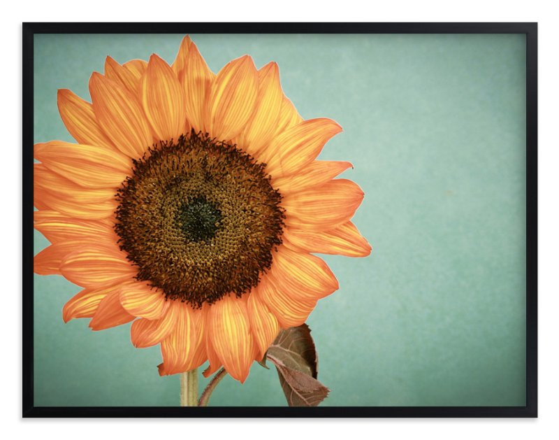 """""""Sunflower Power"""" - Art Print by Debra Butler in beautiful frame options and a variety of sizes."""