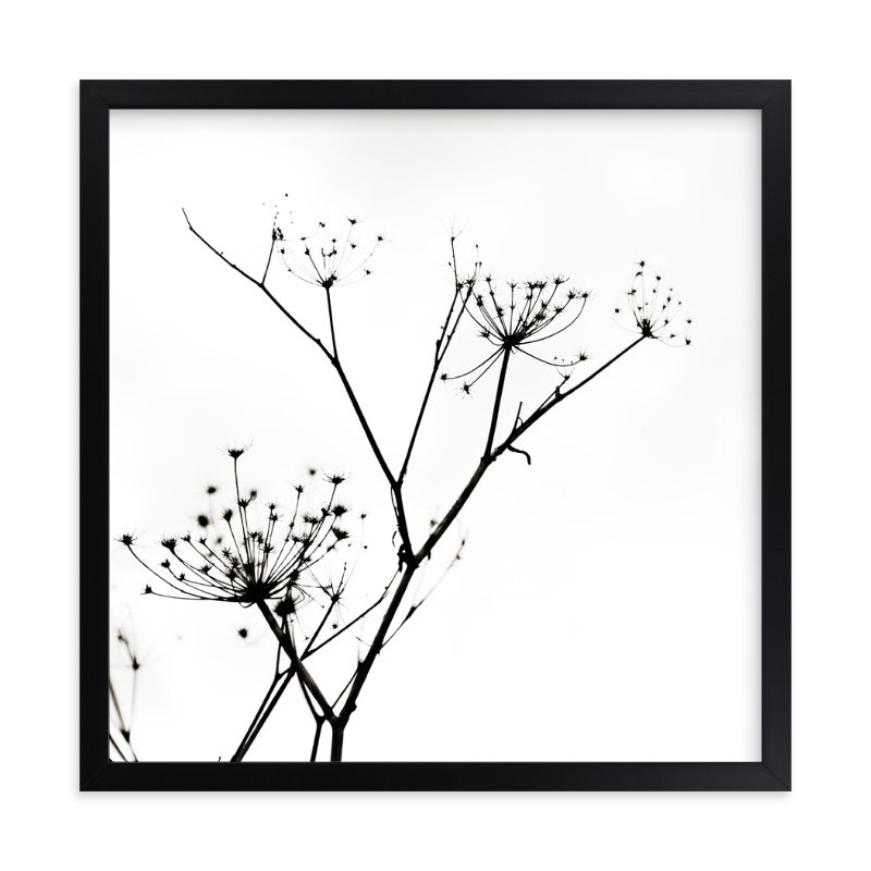 """""""Graphic Elements of Nature"""" - Art Print by Alexis Arnold in beautiful frame options and a variety of sizes."""