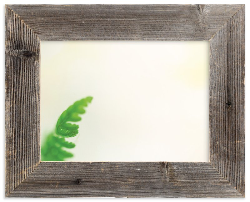"""""""Flowing Fern"""" - Art Print by Smile Peace Love in beautiful frame options and a variety of sizes."""