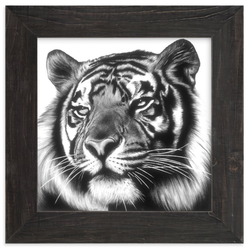 """Tiger"" - Art Print by Jerry Winick in beautiful frame options and a variety of sizes."